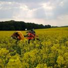 U-Bag motocyklowy enduro żółty PCV